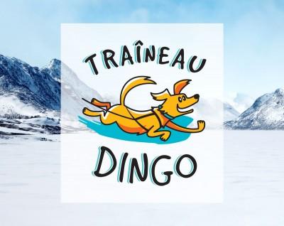 Traîneau Dingo